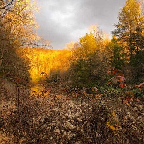 Fall Retreat @ Camp Cowen