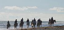 plage-cheval-liberte.jpg