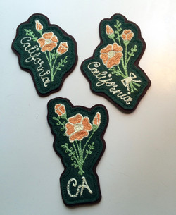 California poppy patches