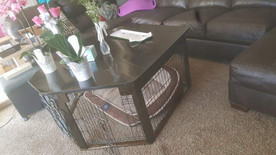 Coffee table kennel