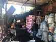 Carvoaria na Baixada mantinha trabalhadores em condições degradantes