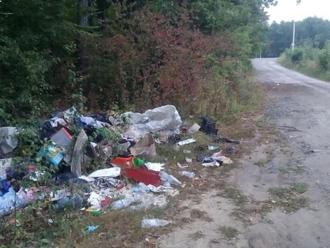 Винних змусили прибирати сміття, яке вони викинули у лісі біля сміттєзвалища