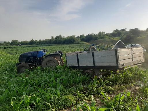 На Хотинщині перекинувся трактор, є потерпілі