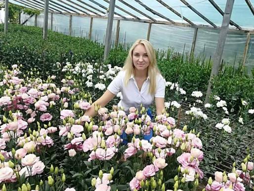 Як створити трояндовий рай біля свого дому