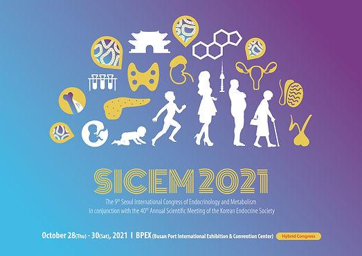 SICEM2021_Key Image.jpg