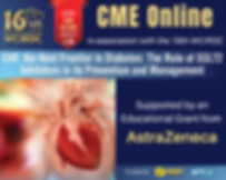 CME Online 16th WCIRDC.png