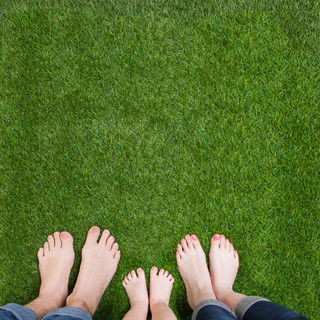 Bare Feet Tall Fescue