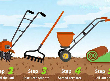 9 Things You Need to Know about Sod Installation