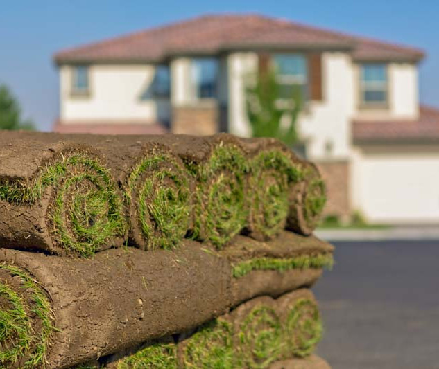 Sod in front of house_edited.jpg