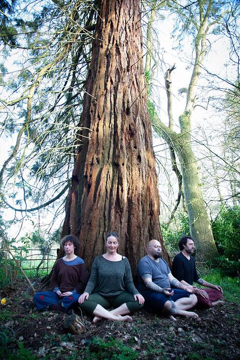Outdoor meditation at Redfield