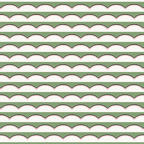 Scallops - Green