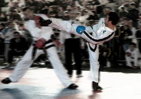 combattimento Campionati Italiani 2008