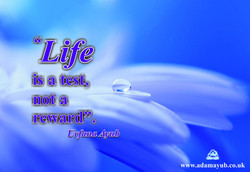 Life is a test