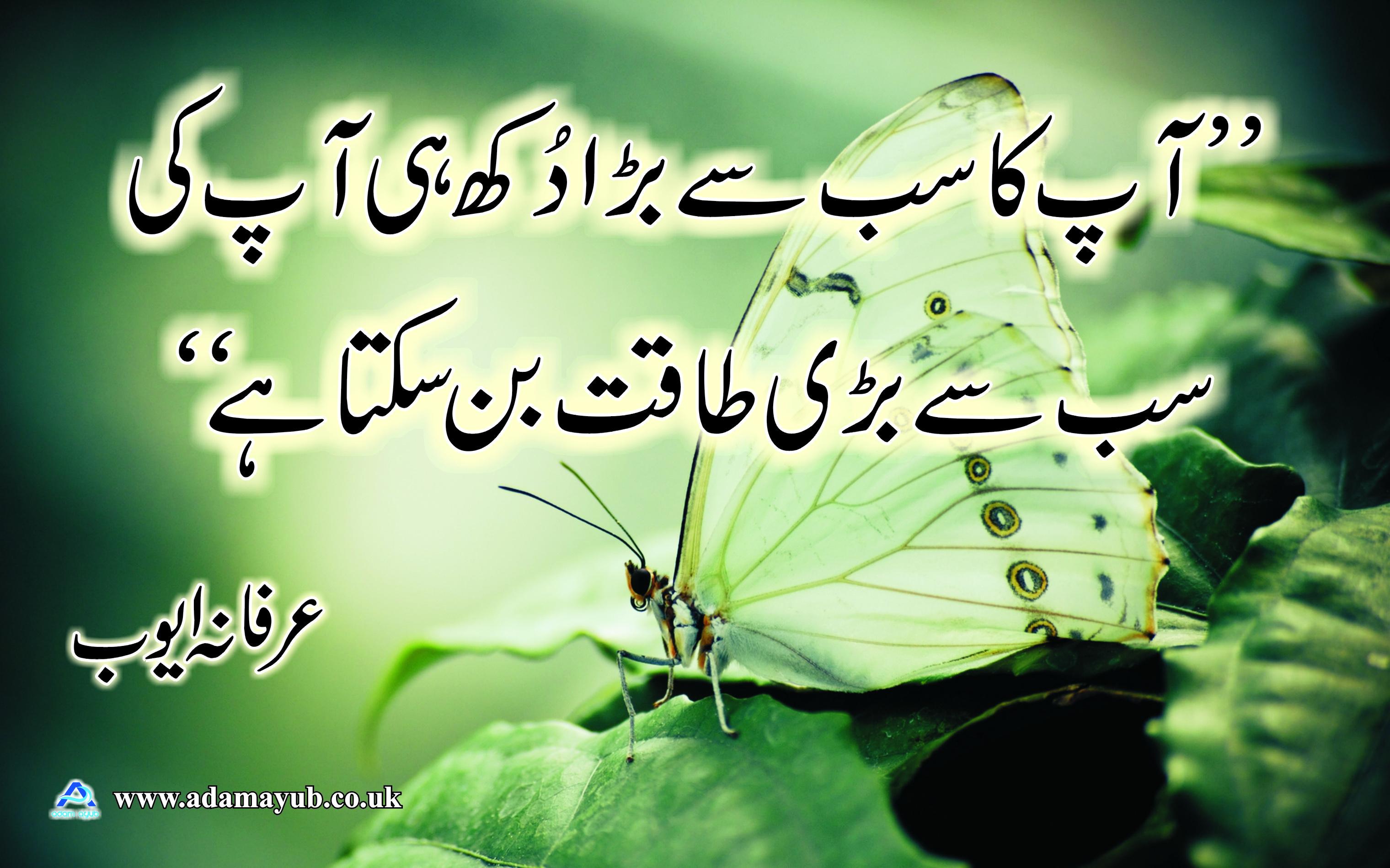 Original quote - Urdu 1