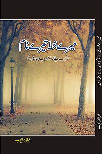 Book COVER mktn_edited.jpg