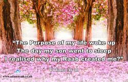 Purpose of my life Q