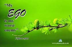my Ego Q