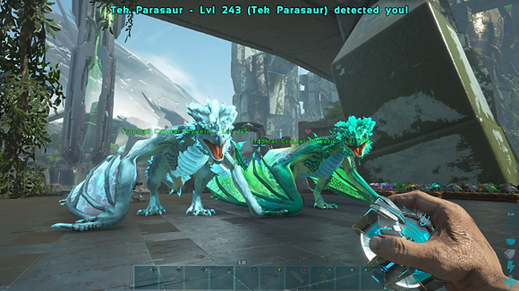 Breeding pair High level Tropical crystal wyverns (over 200 base)