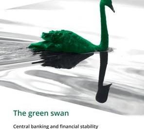 El Cisne Verde: próxima crisis financiera sistémica.
