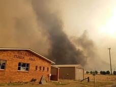 Regional Bushfire Relief