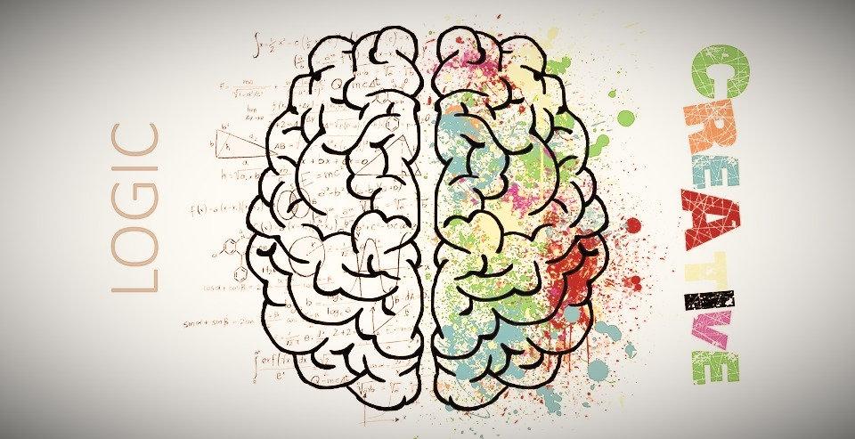 brain-2062055_960_720_edited.jpg