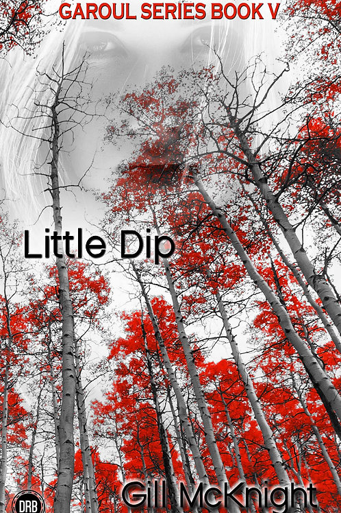 Little Dip by Gill McKnight