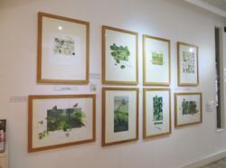 Monoprints by Lynn Bailey
