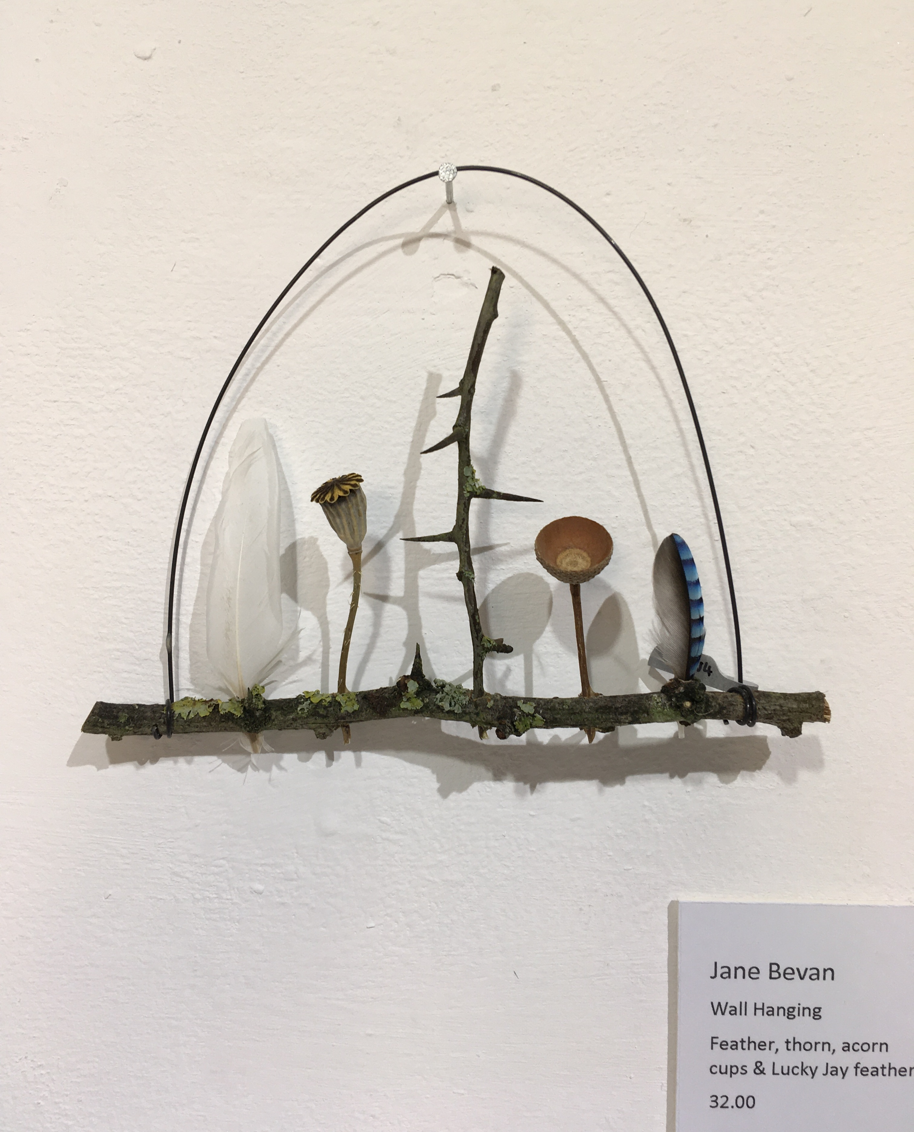 Jane Bevan