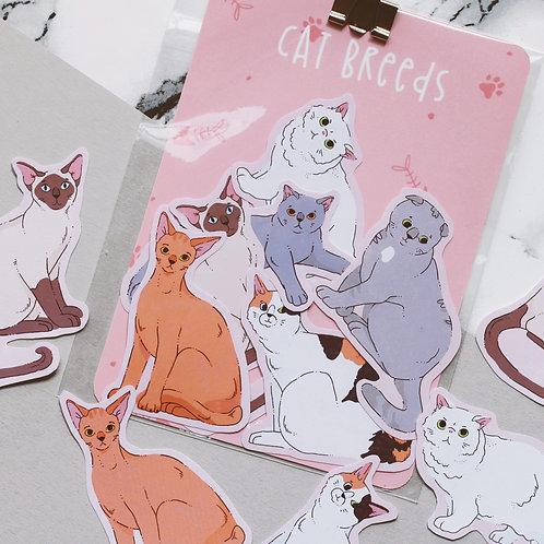 Cat Breeds Sticker Pack