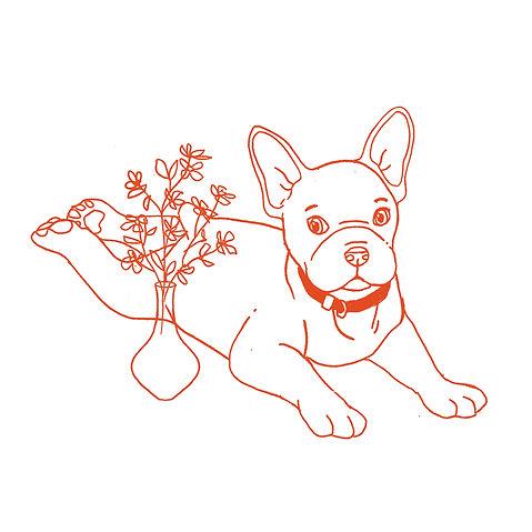 French Bulldog sketch