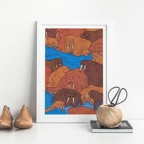 Walruses Art Print