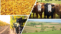 Farm Commodity pic.jpg