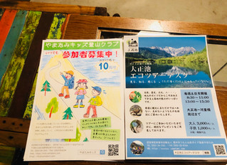 Shimashima Daily
