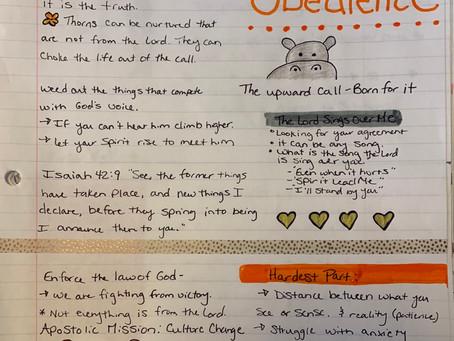 Doodle & Faith: Make Studying Fun