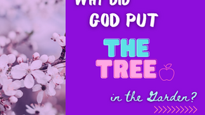 Why Did God Put the Tree In the Garden?