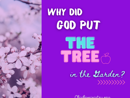 The High Way Journal: Why Did God Put the Tree In the Garden?