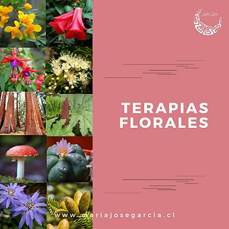 Terapias Florales