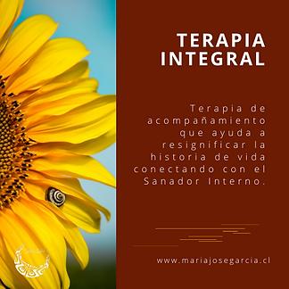 Terapia Integral.png