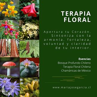 Terapias Florales.png