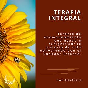 Terapia Integral
