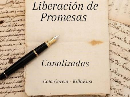 LIBERACION DE PROMESAS