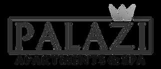 palazi-logo_bearbeitet.png