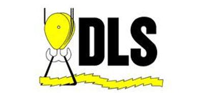 DLS Logo.jpg
