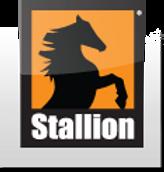 Stallion logo.png