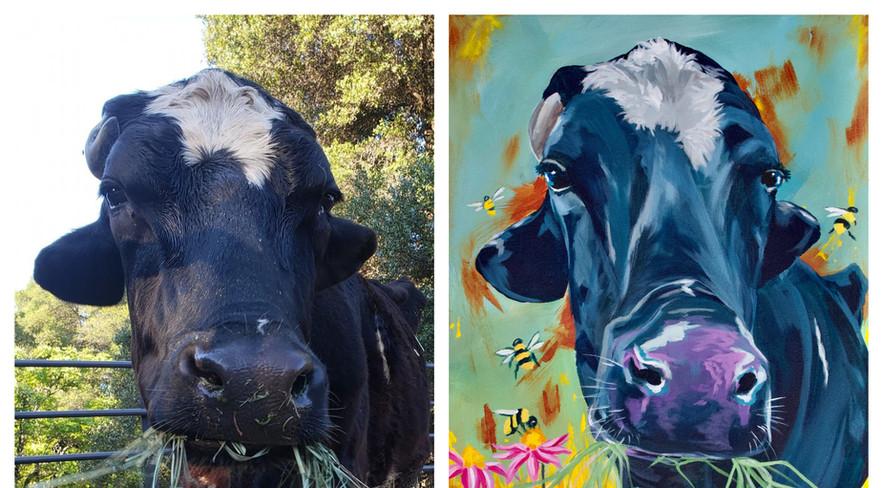 Mason the Dairy Steer