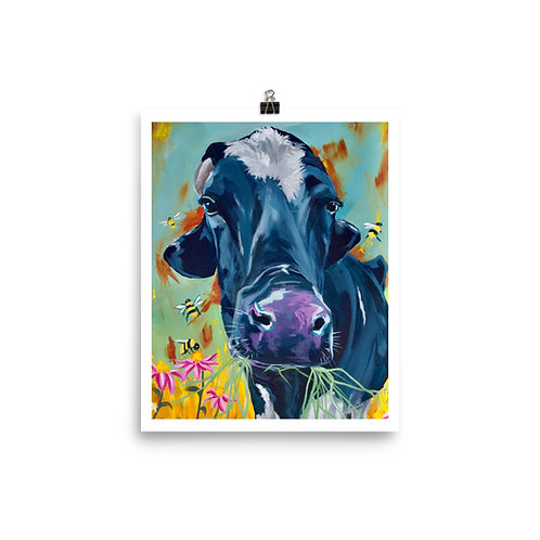 8x10 Mason the Dairy Steer Print