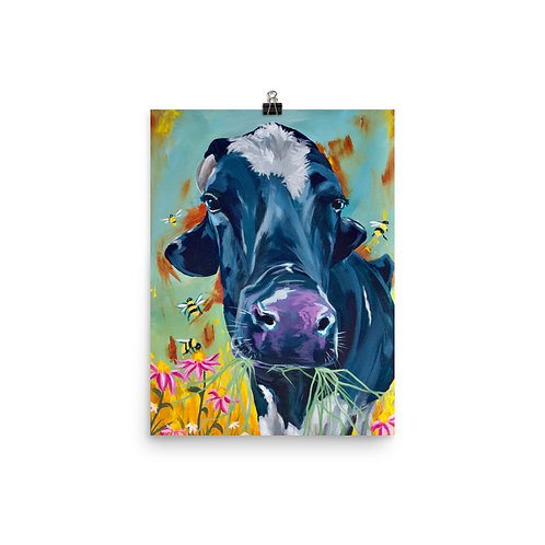Larger Prints of Mason the Dairy Steer