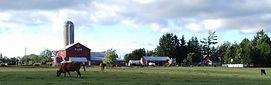 Thor Farms.jpg