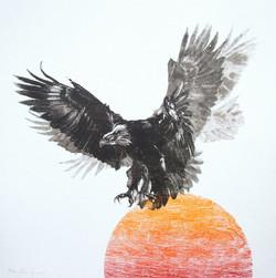 Eagle's Descent