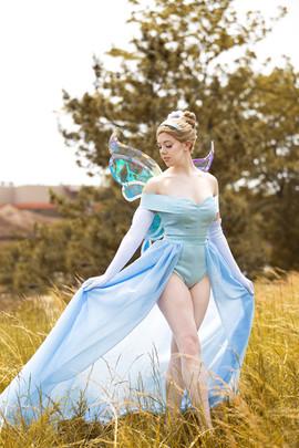 Fairy Princess Cinderella
